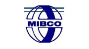 MIBCO team building