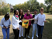 SA Mini Olympics Team Building Johannesburg
