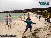 Beach Volleyball Team Building