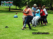 Tug of War Team Building Exercise