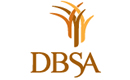 DBSA Team Building Event