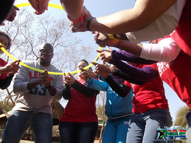 Walk On The Wild Side Amazing Race Team Building Activity