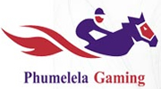 Phumelela Gaming Team Building Events