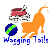 Wagging Tails Charity Team Building Activity